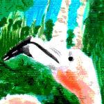 fenicotteri 2 PERCEZIONI altierra design